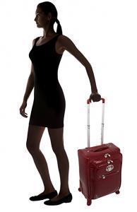 kathy van zeeland luggage