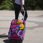 rockland carry on luggage