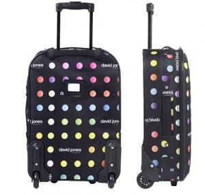 david jones luggage