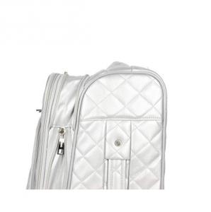 bcbg suitcase
