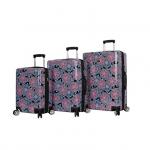 BCBG Luggage