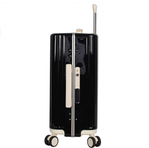 bcbgmaxazria luggage