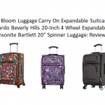 ricardo luggage vs samsonite